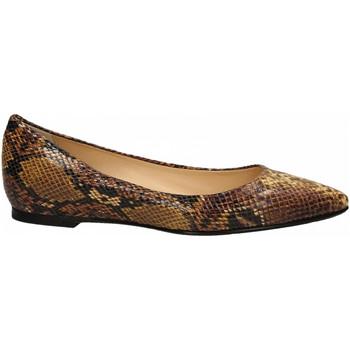 Chaussures Femme Ballerines / babies L'arianna SERPENTE senape