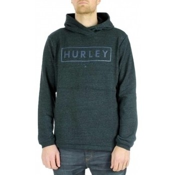 Vêtements Homme Sweats Hurley Sweat  Bayside Boxed Multicolore