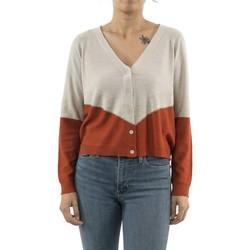 Vêtements Femme Gilets / Cardigans Only 15186722 camille beige