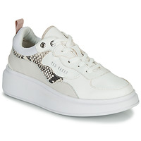 Chaussures Femme Baskets basses Ted Baker ARELLIS White