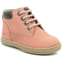 Chaussures Fille Bottines Kickers Tackland ROSE
