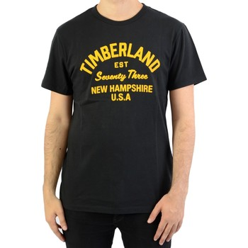 Vêtements Homme T-shirts manches courtes Timberland SS Paint Inspired Black