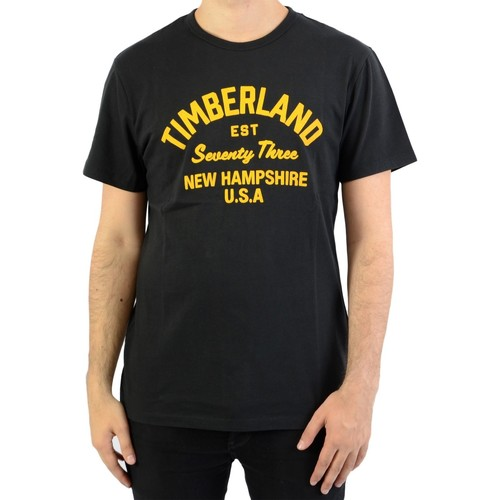 Vêtements Homme T-shirts manches courtes Timberland Tee-Shirt SS Paint Inspired Black