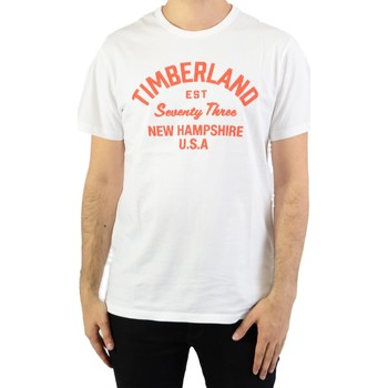 Vêtements Homme T-shirts manches courtes Timberland SS Paint Inspired White