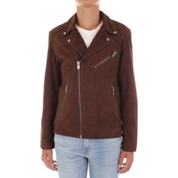 Vêtements Homme Blousons Selected 16065839 marron