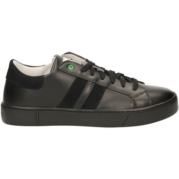 Chaussures Homme Baskets basses Womsh KINGSTON black