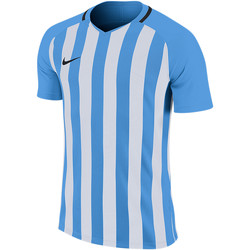 Vêtements Homme T-shirts manches courtes Nike Striped Division III SS Jersey Blau