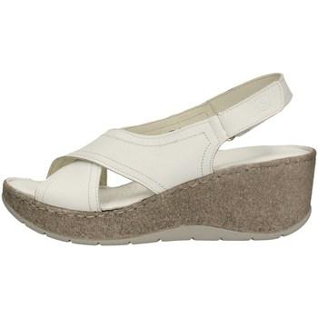Chaussures Femme Sandales et Nu-pieds Sintonie AS5007 BLANC
