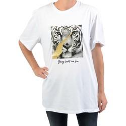 Vêtements Femme T-shirts manches courtes Na-Kd Tee-Shirt NAKD Logo Cropped Boxy White