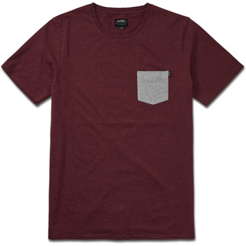 Vêtements Homme T-shirts manches courtes Etnies MOSES SS TEE BURGUNDY
