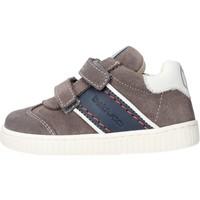 Chaussures Garçon Baskets basses Balducci - Polacchino grigio MSPO3103 GRIGIO