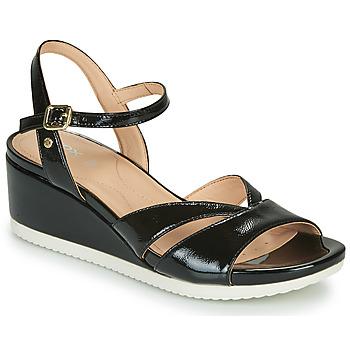 Chaussures Femme Sandales et Nu-pieds Geox D ISCHIA Noir