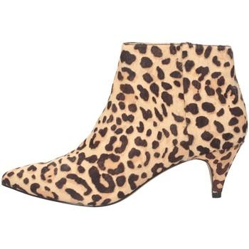 Chaussures Femme Low boots Steve Madden SMSLUCINDA-LEO léopard