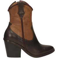 Chaussures Femme Bottines Salvador Ribes ILARY 12 caffe-cacao