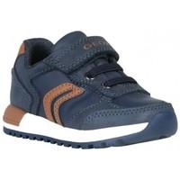 Chaussures Garçon Baskets basses Geox Basket b alben boy bb bleu