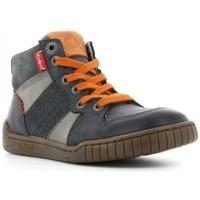 Chaussures Garçon Boots Kickers Boots wazabi Gris