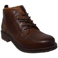 Chaussures Homme Boots Wrangler hill desert Marron