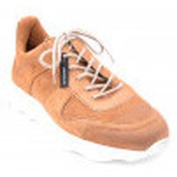 Chaussures Homme Baskets basses Lloyd achill Marron