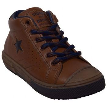 Chaussures Garçon Boots Stones And Bones robbi Marron