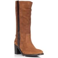 Chaussures Femme Bottes ville Zapp 9053 Marron
