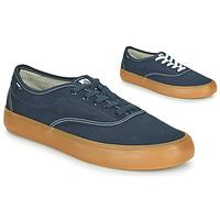 Chaussures Homme Baskets basses Element PASSIPH Bleu