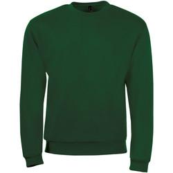 Vêtements Homme Sweats Sols SPIDER CITY MEN Verde