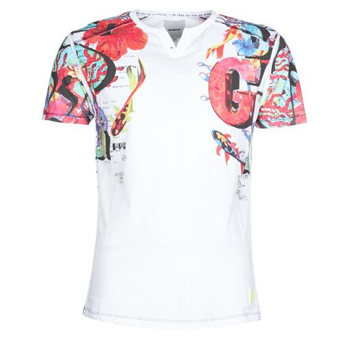 Vêtements Homme T-shirts manches courtes Desigual LIAN Multicolore