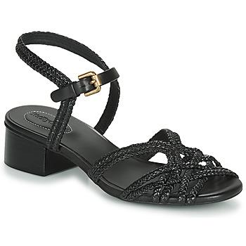Chaussures Femme Sandales et Nu-pieds See by Chloé SB34161A Noir