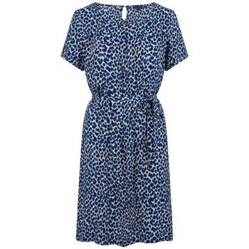 Vêtements Femme Robes courtes King Louie Robe Billie Catnip Bleu Bleu