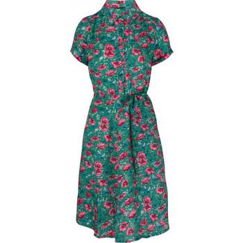Vêtements Femme Robes courtes King Louie Robe Olive Fellini Vert Vert