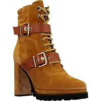 Chaussures Femme Bottines Elvio Zanon EK3601P Marron