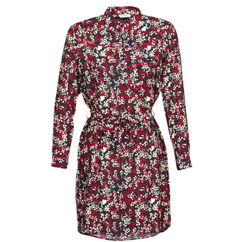 Vêtements Femme Robes courtes Kaporal RAWAN Multicolore