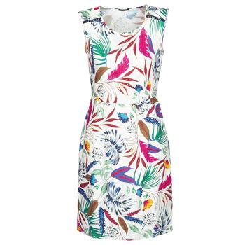 Vêtements Femme Robes courtes One Step RAFIK Multicolore