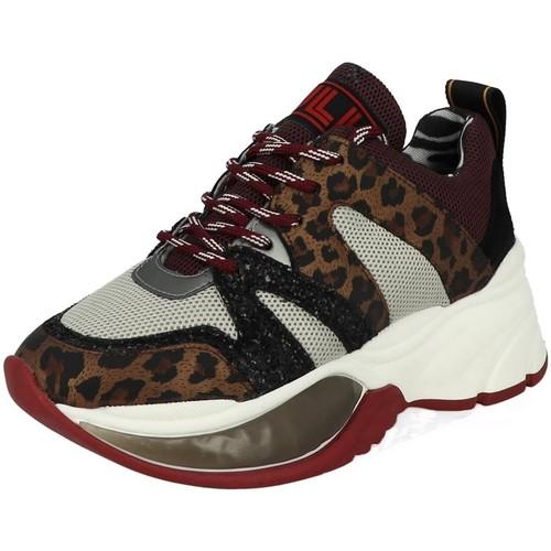 Chaussures Femme Baskets basses Meline ve402 multicolore