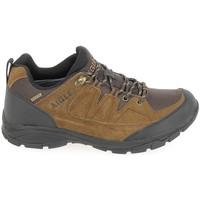 Chaussures Homme Randonnée Aigle Vedur Low MTD Marron Marron