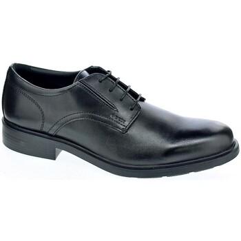 Chaussures Homme Derbies & Richelieu Geox Dublin Negro