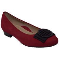 Chaussures Femme Ballerines / babies Ara 12-43720-77 rouge