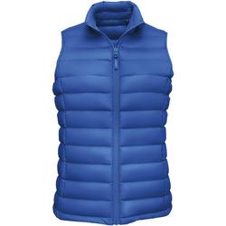 Vêtements Femme Doudounes Sols WILSON BW FEATHERS Azul