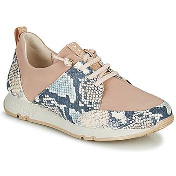 Chaussures Femme Baskets basses Hispanitas KIOTO Beige / Bleu