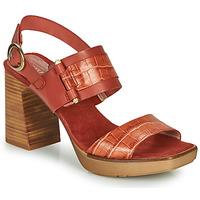 Chaussures Femme Sandales et Nu-pieds Hispanitas PETRA Marron