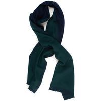 Accessoires textile Homme Echarpes / Etoles / Foulards Fay NSMF2392960-HFR0G57 verde
