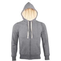Vêtements Homme Sweats Sols SHERPA WINTER MEN Gris