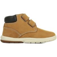 Chaussures Garçon Boots Timberland Toddle Tracks H&L marron
