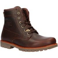 Chaussures Homme Boots Panama Jack PANAMA 03 THUNDER C2 Marr?n