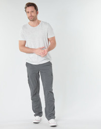 Vêtements Homme Pantalons cargo Columbia SILVER RIDGE II CARGO PA Gris