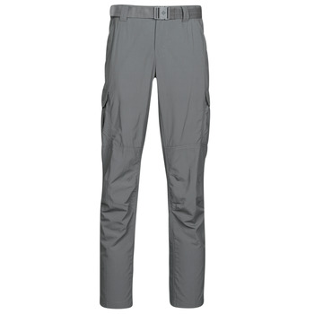 Vêtements Homme Pantalons cargo Columbia Silver ridge II cargo pa Grill