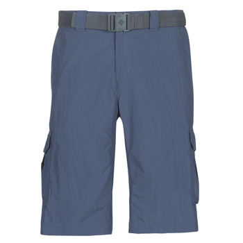 Vêtements Homme Shorts / Bermudas Columbia Silver ridge II cargo sh Dark Mountain