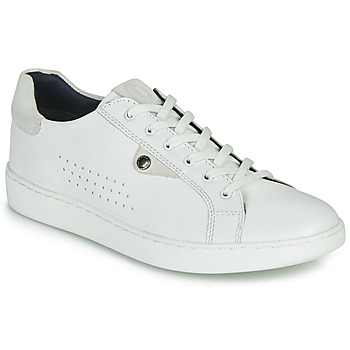 Chaussures Homme Baskets basses Base London BUZZ Blanc