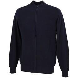 Vêtements Homme Gilets / Cardigans Rms 26 Tom navy fz gilet Bleu marine / bleu nuit