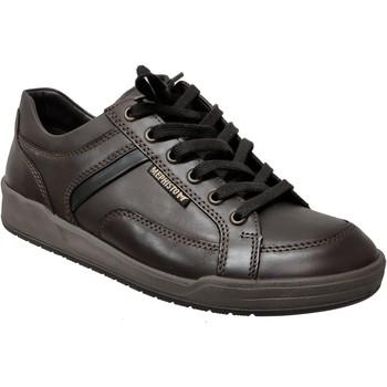 Chaussures Homme Baskets basses Mephisto RODRIGO Marron foncé cuir